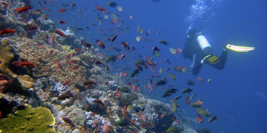 El 60 % de los océanos muestra signos del impacto del cambio climático (horizontal-x3)