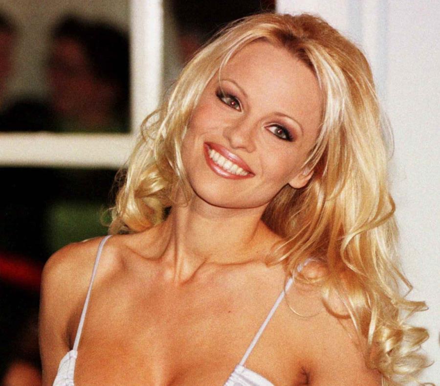Pamela Anderson descubre la doble vida de su novio — Ruptura
