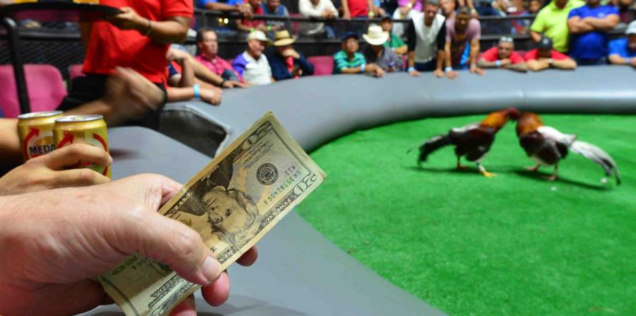 La enmienda que busca ilegalizar las jugadas de gallo fue aprobada de manera bipartita el pasado mes de mayo en la Cámara de Representantes federal en votación de 359-51. (horizontal-x3)