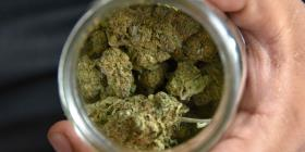 Abre en Tallahasee el primer dispensario de marihuana medicinal
