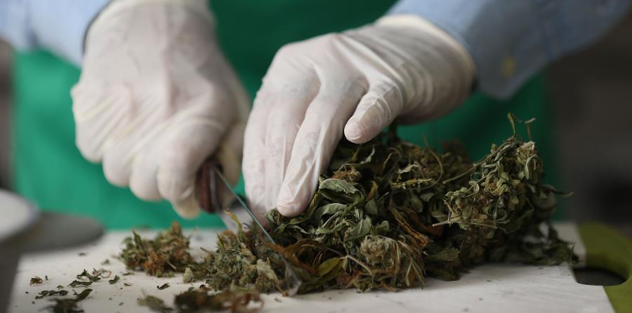 Según la madre del niño, el cannabis es la única sustancia que puede prevenir las convulsiones (horizontal-x3)