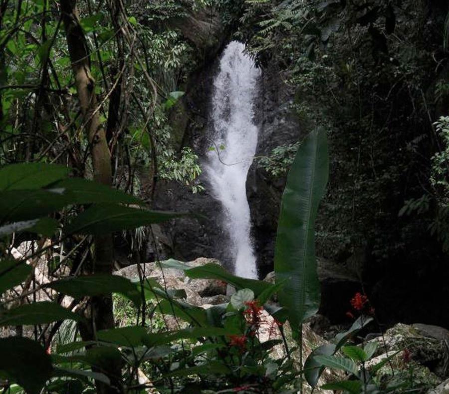 Vista de la cascada Soplaera en Peñuelas. (GFR Media) (semisquare-x3)