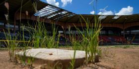 En camino una segunda vida para el estadio Yldefonso Solá Morales