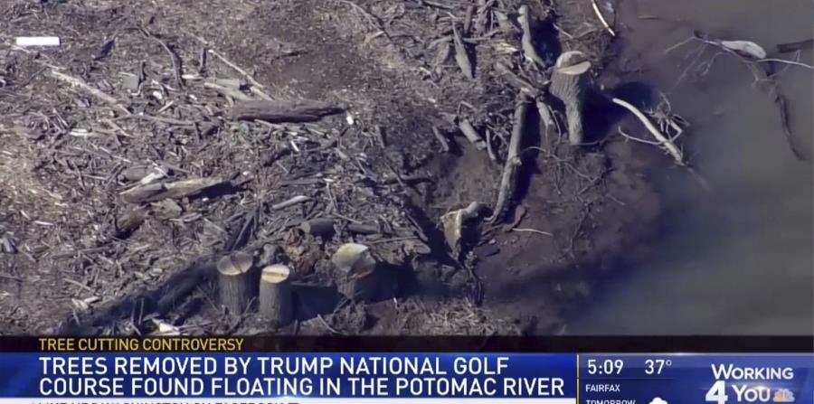 El grupo ambientalista Potomac Riverkeepers dijo que recibió quejas el mes pasado de que más árboles talados fueron arrojados al río. (WRC / NBC4 Washington vía AP) (horizontal-x3)