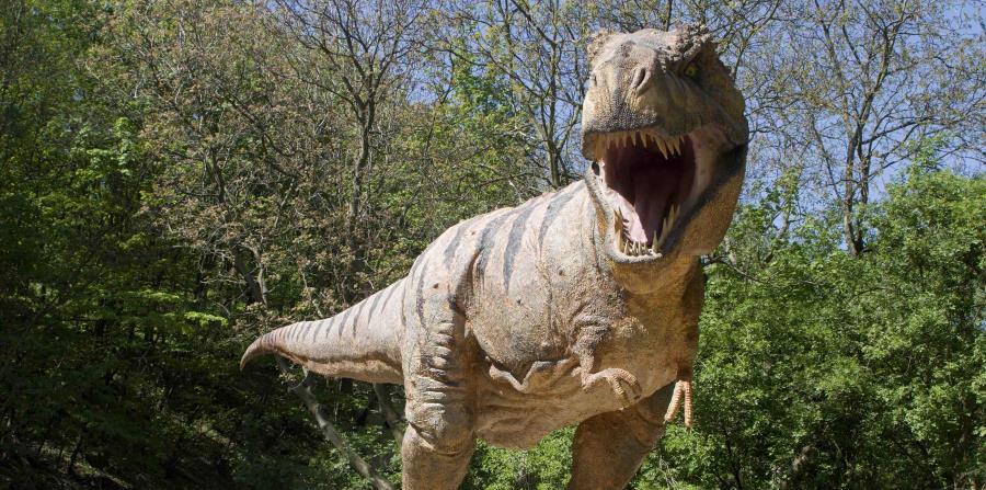 El destino de los dinosaurios cambió en 30 segundos (horizontal-x3)