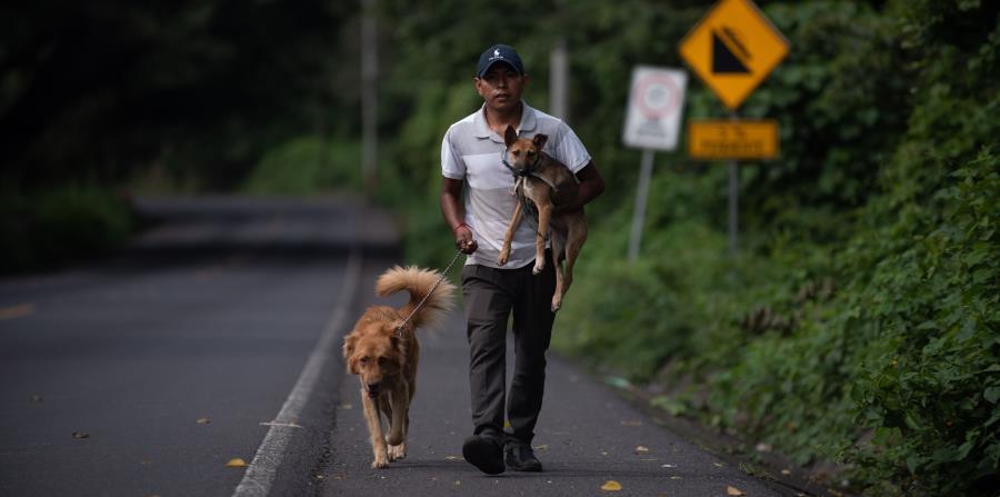 la organización HSI animó además a los internautas a subir a las redes sociales fotos con sus mascotas, en solidaridad con el sufrimiento de los animales en Yulin. (horizontal-x3)