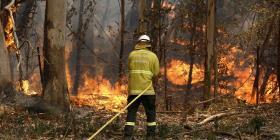 Incendios forestales en Australia destruyen casas y lesionan a bomberos