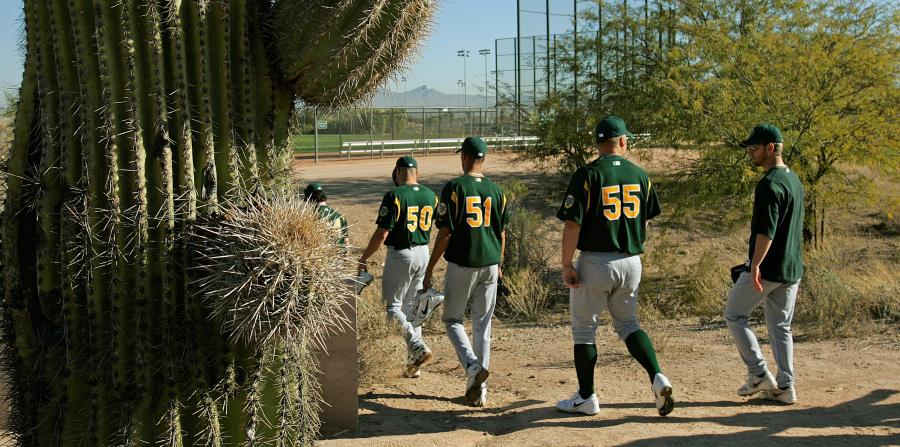Los entrenamientos primaverales se llevarán a cabo nuevamente en Arizona y Florida. (AP) (horizontal-x3)
