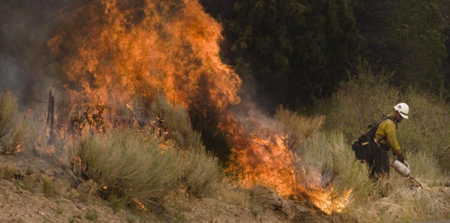Los fuegos forestales de Oklahoma están contenidos un 3%. (horizontal-x3)