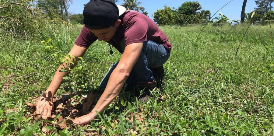 En la foto, Jael Ramos Asia, quien forma parte del grupo de siete estudiantes egresados del nuevo Bachillerato en Artes en Agricultura Sustentable de la Universidad de Puerto Rico en Utuado. (Suministrada)