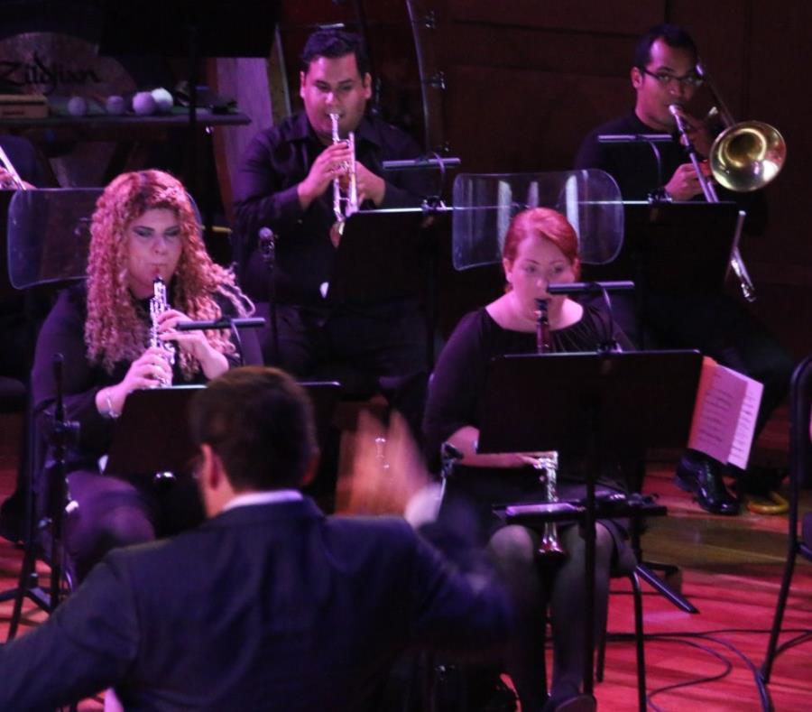 La Orquesta Camerata Filarmónica durante el pasado