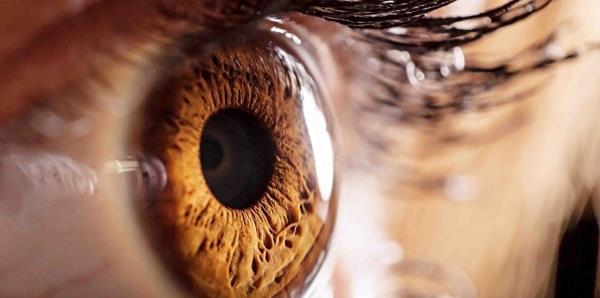 Los ojos revelan el estado de la salud