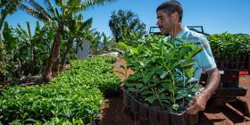 Hispanic Federation continúa innovando en el sector del café