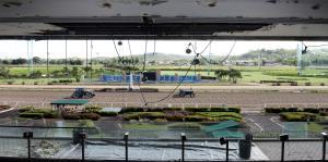 Escenario imperfecto para el reinicio de las carreras en Camarero
