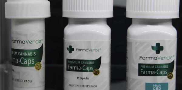 Mira lo que presentaron en la convención anual del cannabis medicinal