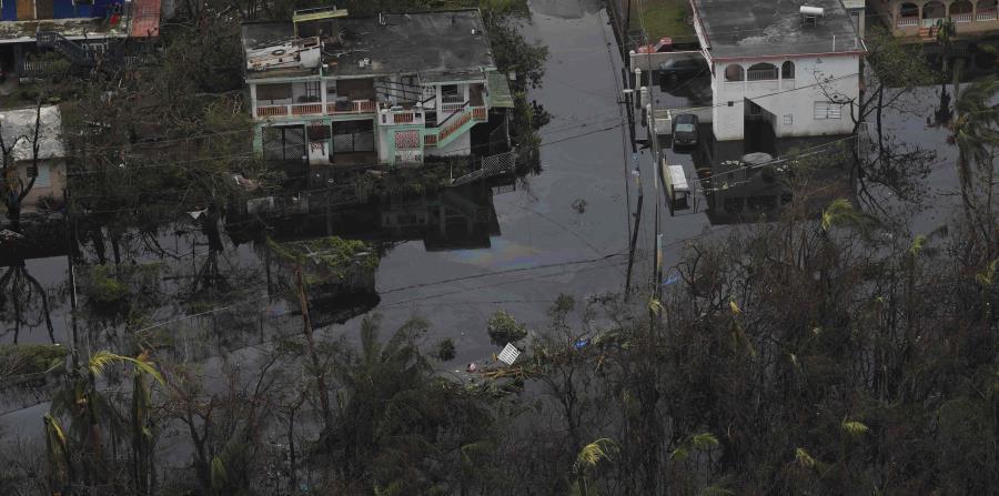 El área de Madianía Alta en Loíza después del paso del huracán María. (GFR Media) (horizontal-x3)