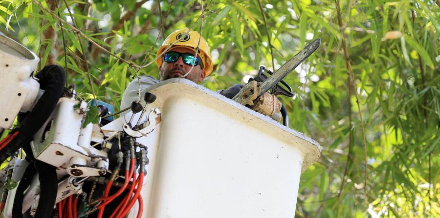 Miles de trabajadores de la AEE están en la calle reparando los problemas causados por el huracán Irma. (horizontal-x3)