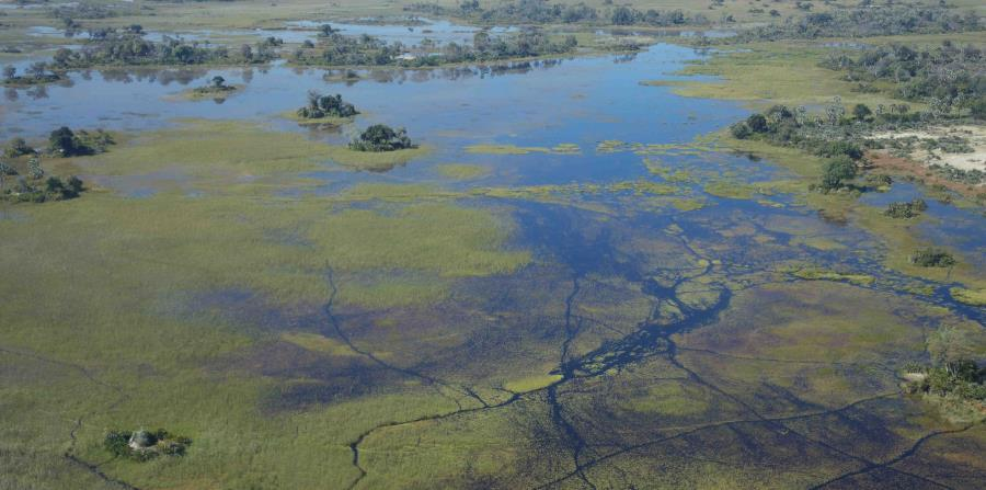 Sobrevolando el delta en Kwando. (EFE/Foto cedida por Raptanat )
