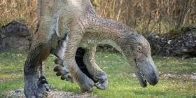 Un estudio revela cómo los dinosaurios sobrevivieron a las bajas temperaturas