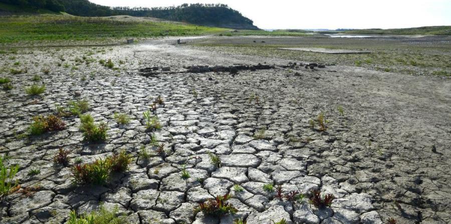 Las altas temperaturas y la sequía están afectando seriamente a distintos lugares de la Tierra (horizontal-x3)
