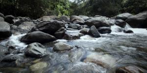 ¿Cómo identificar que viene un golpe de agua en un río?