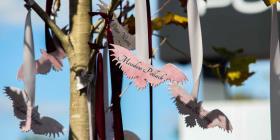 Una ceremonia por el aniversario del tiroteo en Parkland es realizada en Pulse