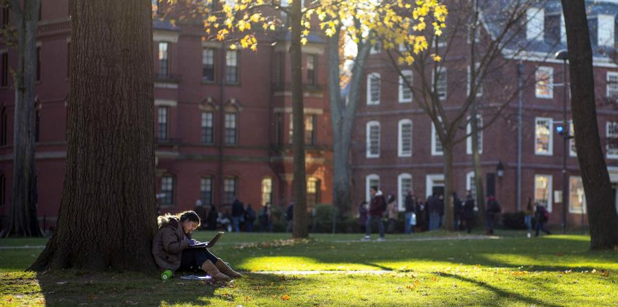 Campus de la universidad de Harvard, en Cambridge. (EFE) (horizontal-x3)