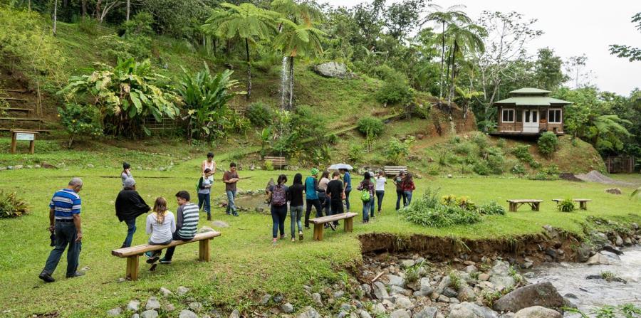 El Bosque Escuela de Casa Pueblo, en Adjuntas, tiene  dos eventos de contacto con la tierra.  (Archivo GFR Media)