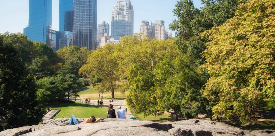 Unos 42 millones de personas visitan anualmente el Central Park. (horizontal-x3)