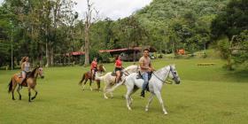 Excursiones locales para entrar en contacto con la tierra