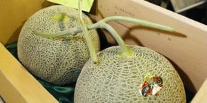 Subastan dos melones por un precio récord de $45,600