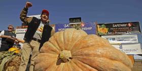 Una inusual regata de calabazas gigantes marca el inicio del otoño en Oregón