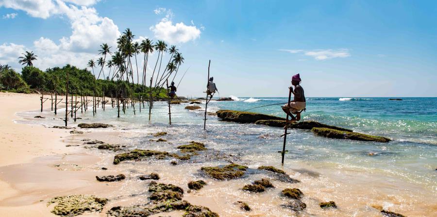 Playa Mirissa, Mirissa, Sri Lanka. (Unsplash)