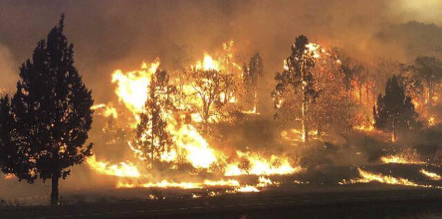 Uno de los incendios que batallan las autoridades se ha propagado cerca de la frontera con el estado de Oregon. (AP) (horizontal-x3)