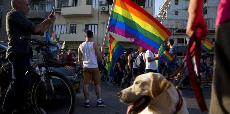 La Corte Suprema de Justicia de Costa Rica votó a favor de habilitar el matrimonio homosexual (horizontal-x3)