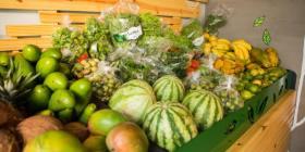 Informan a los agricultores de las ayudas disponibles a causa del coronavirus