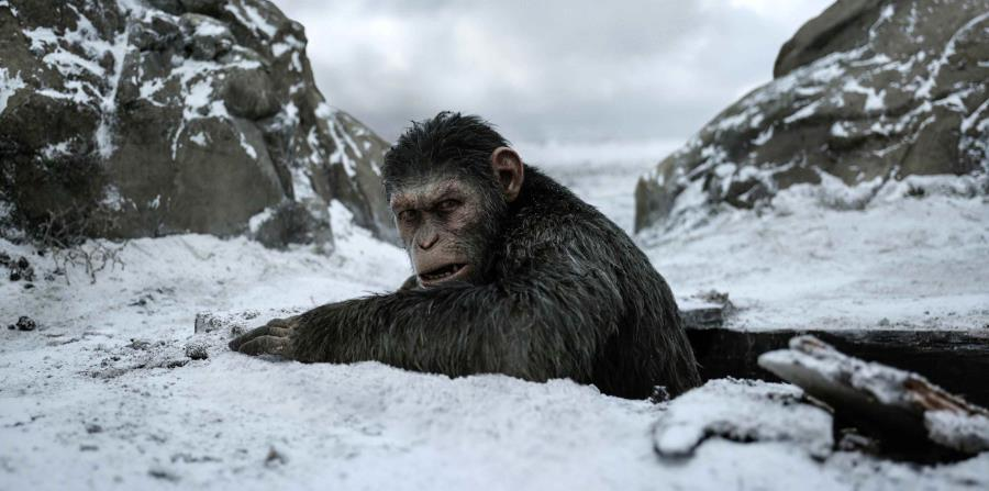 "War for the Planet of the Apes"", una lucha por dominar el planeta ..."