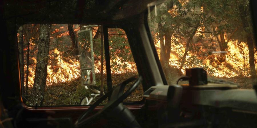Buscan cadáveres entre los restos de incendios en California (horizontal-x3)