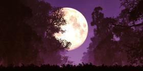 Una superluna rosa se verá en todo el mundo la siguiente semana