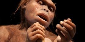 Fósil de cráneo revela que Homo erectus es 200,000 años más antiguo de lo que se creía