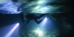 La alentadora recuperación de los arrecifes de corales de Jamaica