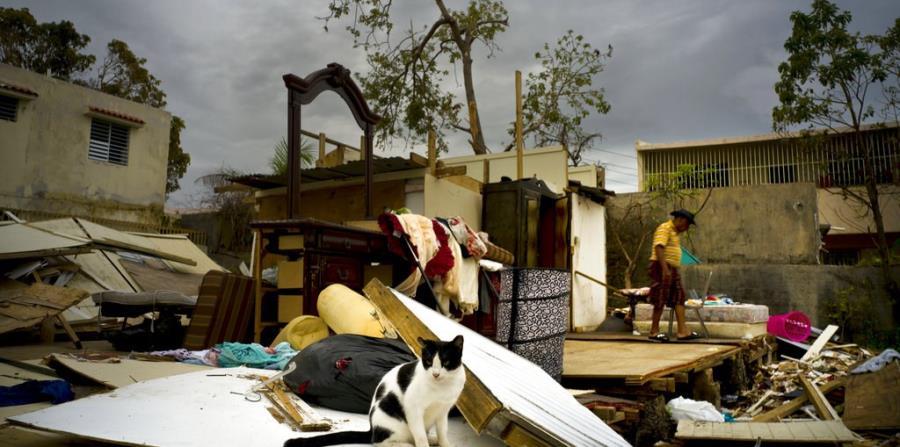 Millones de personas deben abandonar sus hogares cada año al ser víctimas de desastres naturales (AP). (horizontal-x3)