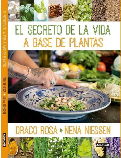Draco Rosa debuta como escritor de libros (vertical-x1)