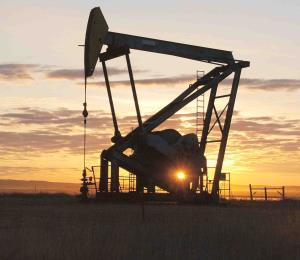 Política y petróleo: coctel peligroso