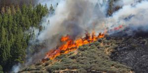 Imágenes del mayor incendio forestal de España en lo que va del año