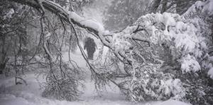 Una tormenta de nieve arropa a Moscú
