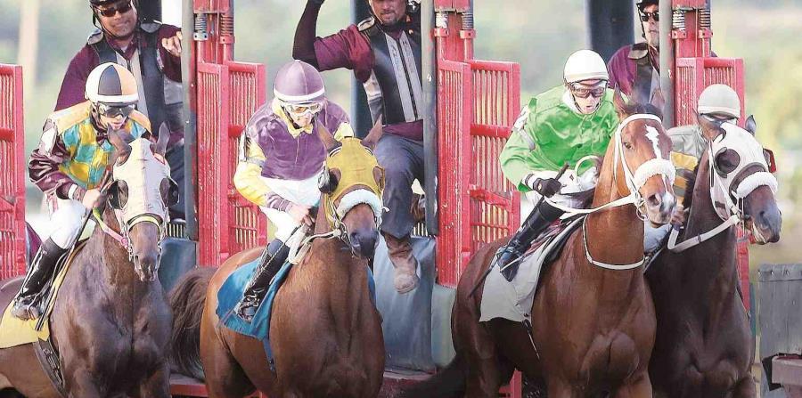Una carrera de caballos en el hipódromo Camarero (horizontal-x3)