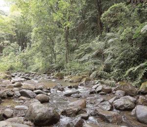 Rescatan a cuatro personas del cañón San Cristóbal