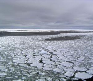 Capas de hielo en la Antártida son capaces de retroceder hasta 50 metros al día