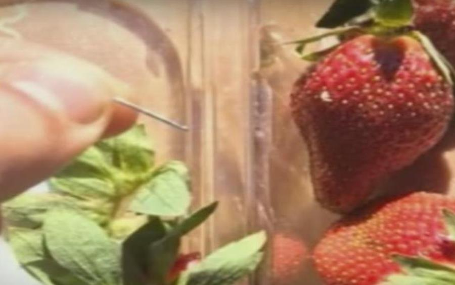 Seis marcas de fresas fueron afectadas por el sabotaje con agujas en Australia (semisquare-x3)